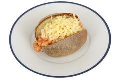 Vita bönor i tomatsås och ostomslagspotatis Fotografering för Bildbyråer