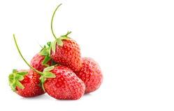 vita bakgrundsjordgubbar nya mogna jordgubbar fotografering för bildbyråer