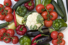 vita bakgrundslineupgrönsaker Royaltyfri Bild