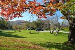 Vita bergfallfärger, New Hampshire Arkivbild