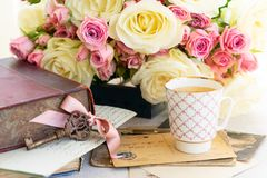 Vita blommande rosor för rosa färger och Royaltyfria Foton