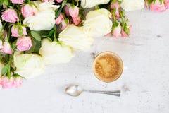 Vita blommande rosor för rosa färger och Royaltyfria Bilder