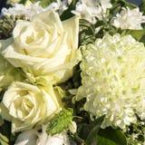 Vita blommor för bukett Arkivbild