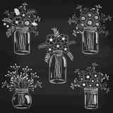 Vita blommor för svart tavla Arkivfoton