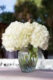 Vita blommor i den glass vasen Royaltyfri Foto