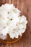 Vita blommor i en glass vase Royaltyfria Bilder