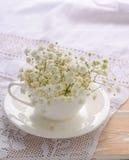 Vita blommor i en vit kopp Arkivfoton
