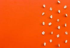 Vita blommor med kopia-utrymme på orange bakgrund Royaltyfria Bilder