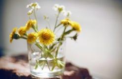 Vita blommor och den gula blommatussilagot är i ett litet exponeringsglas av vatten arkivfoto