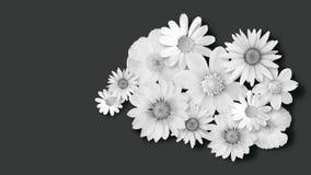 Vita blommor på mörk bakgrund Royaltyfria Foton