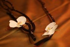 Vita blommor på den guld- soffan Arkivfoto