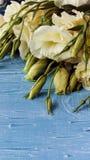 Vita blommor som ligger på ett blått träbräde Royaltyfri Fotografi