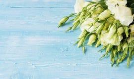 Vita blommor som ligger på ett blått träbräde Arkivfoto