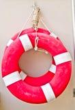 Vita-boe sulla piscina immagini stock libere da diritti