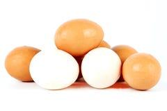vita bruna ägg Arkivfoto