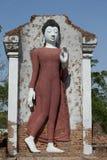 Vita buddha Royaltyfria Foton