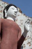 Vita buddha Royaltyfria Bilder