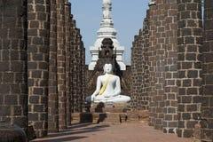 Vita buddha Arkivfoton