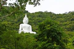 Vita buddha på berget Arkivfoton