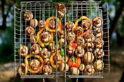 Vita champinjoner med grönsaker på en öppen brand, en turist- dinne Royaltyfria Foton