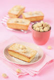 Vita chokladkakor med Macadamiamuttrar Royaltyfri Fotografi