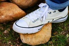 Vita Chuck Taylor Shoes arkivbilder