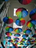 Vita Colourful Immagine Stock Libera da Diritti
