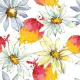 Vita Daisy Flower Blom- botanisk blomma Seamless bakgrund mönstrar Royaltyfria Foton