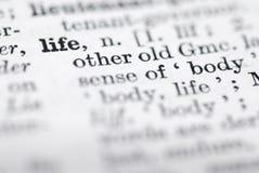 Vita; Definizione in dizionario inglese. Immagine Stock