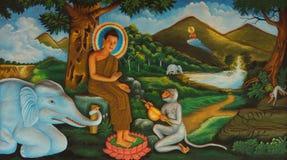vita del  del â di Buddha Fotografie Stock