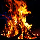 Vita del fuoco fotografia stock libera da diritti
