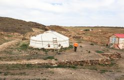 Vita del nomade del mongolian sulla savanna immagine stock