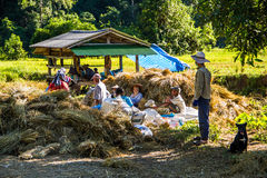 vita dell'agricoltore Fotografia Stock Libera da Diritti