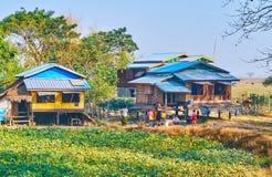 Vita dell'azienda agricola, Hlegu, Myanmar Immagine Stock Libera da Diritti