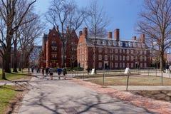 Vita della città universitaria di Harvard Fotografie Stock Libere da Diritti