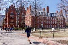 Vita della città universitaria di Harvard Fotografie Stock