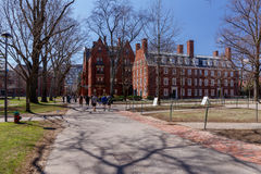 Vita della città universitaria di Harvard Fotografia Stock Libera da Diritti