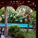 Vita di Bali Immagini Stock