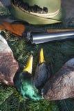 vita di caccia ancora Fotografia Stock Libera da Diritti