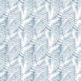 Vita di mare dell'alga Illustrazione dipinta disegnata a mano dell'acquerello Illustrazione subacquea del fondo dell'acquerello s Fotografia Stock Libera da Diritti