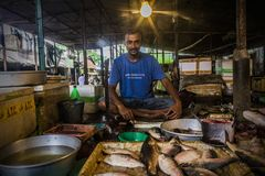 Vita di un venditore del pesce immagini stock