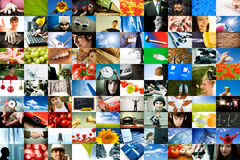 Vita differente Fotografia Stock Libera da Diritti