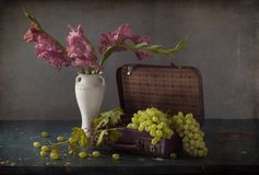 Vita druvor, flaskor av vin och ett exponeringsglas av vin Arkivbilder