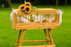 Vita duvor i en träbur dekorerade med solrosor Royaltyfria Bilder