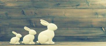 Vita easter kaniner föreställ retro stil Royaltyfria Foton