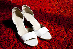 vita eleganta skor Arkivbild