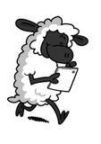 Vita får som spelar med en minnestavla Arkivbild