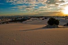 Vita för sanddyn för nationalpark berg NM för öken för skuggor länge Royaltyfri Foto