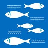 Vita fiskar i havet Arkivbilder