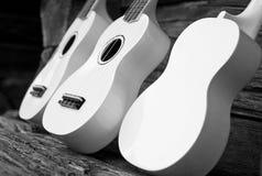 vita gitarrer Fotografering för Bildbyråer